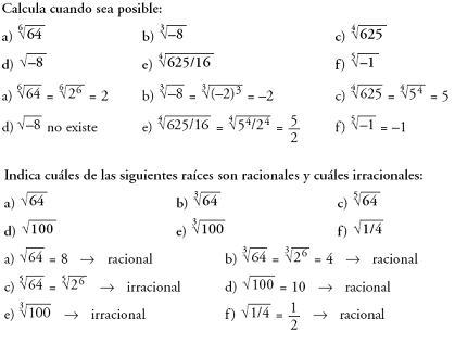 Matemáticas. Raices